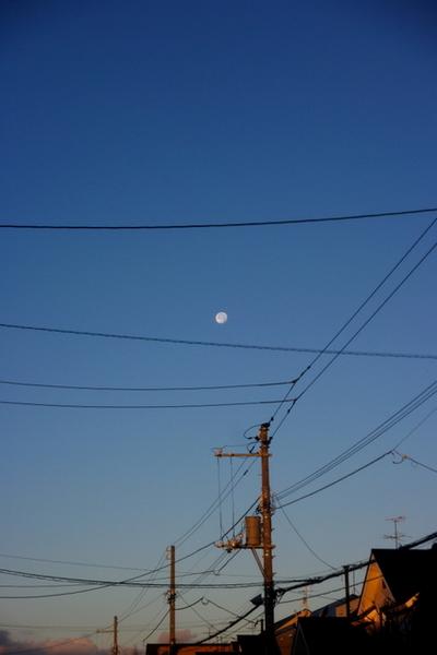 10.11.24.夜明けの月.JPG