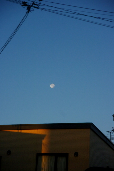 10.11.24.夜明けの月2.JPG