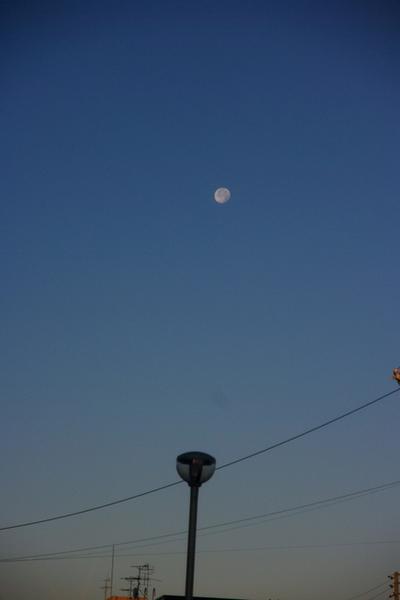 10.11.24.夜明けの月3.JPG