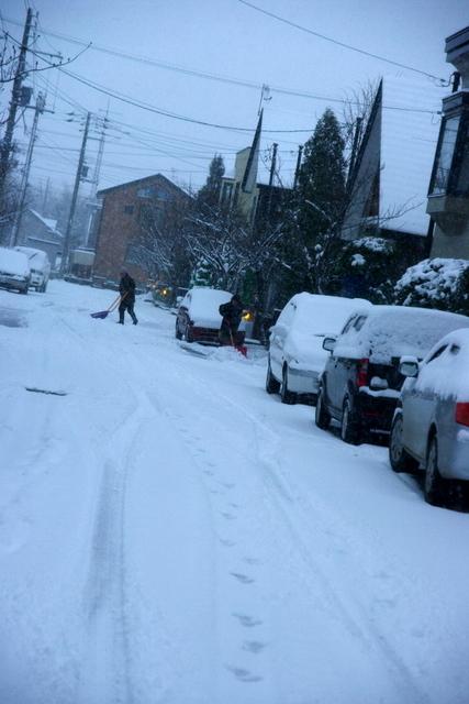 10.11.29.雪1.JPG