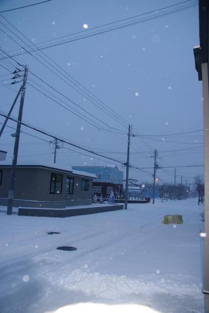 10.11.29.雪2.JPG