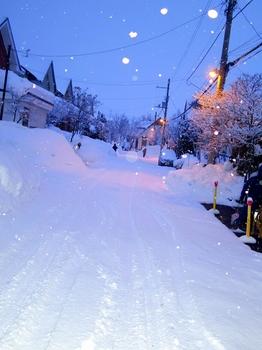 12.1.23.朝の雪57s.jpg