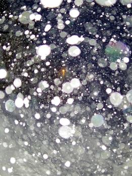 12.1.24.吹雪s.jpg