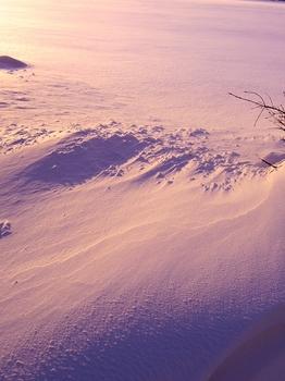 12.1.27.雪紋1s.jpg