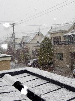 12.11.23.初雪●.JPG