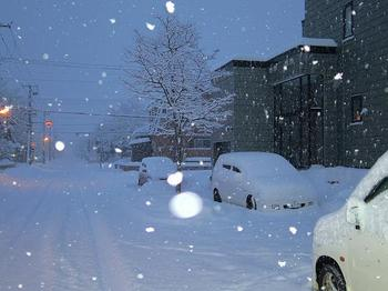 12.12.16.雪の日6.JPG