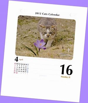 12.4.16.猫めくりs.jpg