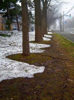 12.4.19.残雪2s.jpg