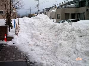 15.1.27.排雪日1.jpg