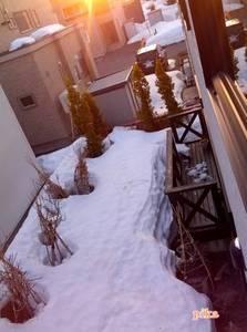 15.3.19.残雪.jpg
