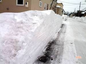 2015.1.27.排雪後.jpg