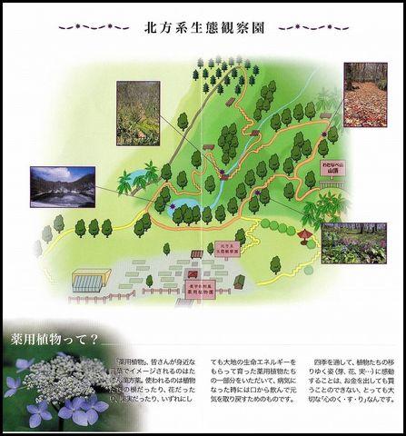 北方系生態観察園s.jpg