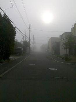 12.9.14.朝靄
