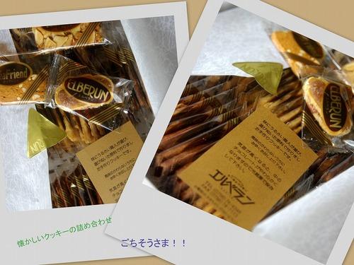 s-2010-10-09エルベ.jpg